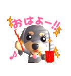 3D ダックスフレンズ(3)メリクリ、年賀入り(個別スタンプ:01)