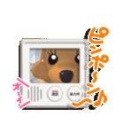 3D ダックスフレンズ(3)メリクリ、年賀入り(個別スタンプ:03)
