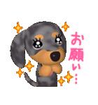 3D ダックスフレンズ(3)メリクリ、年賀入り(個別スタンプ:08)