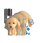 3D ダックスフレンズ(3)メリクリ、年賀入り(個別スタンプ:09)