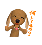 3D ダックスフレンズ(3)メリクリ、年賀入り(個別スタンプ:13)