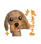 3D ダックスフレンズ(3)メリクリ、年賀入り(個別スタンプ:20)