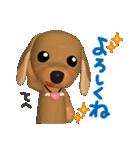 3D ダックスフレンズ(3)メリクリ、年賀入り(個別スタンプ:23)