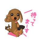3D ダックスフレンズ(3)メリクリ、年賀入り(個別スタンプ:33)