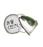 コスパぶり(香川県出身鰤)(個別スタンプ:06)
