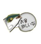 コスパぶり(香川県出身鰤)(個別スタンプ:07)