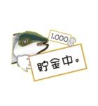 コスパぶり(香川県出身鰤)(個別スタンプ:10)