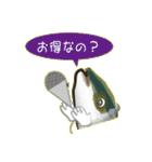 コスパぶり(香川県出身鰤)(個別スタンプ:35)