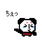 どっとパンダ×涙腺崩壊(個別スタンプ:13)