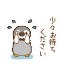 執事ぺんぎん1(個別スタンプ:34)