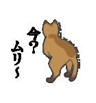 いろいろ毛柄の猫会話(個別スタンプ:08)