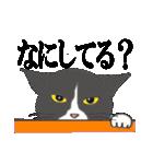いろいろ毛柄の猫会話(個別スタンプ:20)