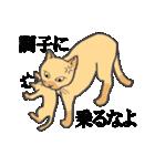 いろいろ毛柄の猫会話(個別スタンプ:33)