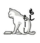 いろいろ毛柄の猫会話(個別スタンプ:36)