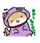 柴犬のしーたん ハロウィン~お正月編(個別スタンプ:2)