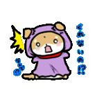 柴犬のしーたん ハロウィン~お正月編(個別スタンプ:3)