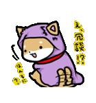 柴犬のしーたん ハロウィン~お正月編(個別スタンプ:5)