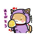 柴犬のしーたん ハロウィン~お正月編(個別スタンプ:7)