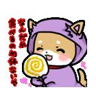 柴犬のしーたん ハロウィン~お正月編(個別スタンプ:8)