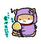 柴犬のしーたん ハロウィン~お正月編(個別スタンプ:10)