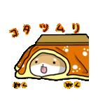 柴犬のしーたん ハロウィン~お正月編(個別スタンプ:14)