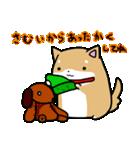 柴犬のしーたん ハロウィン~お正月編(個別スタンプ:16)