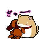 柴犬のしーたん ハロウィン~お正月編(個別スタンプ:18)