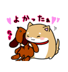 柴犬のしーたん ハロウィン~お正月編(個別スタンプ:20)