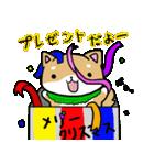 柴犬のしーたん ハロウィン~お正月編(個別スタンプ:21)