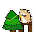 柴犬のしーたん ハロウィン~お正月編(個別スタンプ:22)