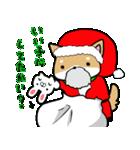 柴犬のしーたん ハロウィン~お正月編(個別スタンプ:23)