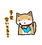 柴犬のしーたん ハロウィン~お正月編(個別スタンプ:26)