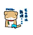 柴犬のしーたん ハロウィン~お正月編(個別スタンプ:28)