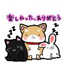 柴犬のしーたん ハロウィン~お正月編(個別スタンプ:30)