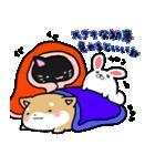 柴犬のしーたん ハロウィン~お正月編(個別スタンプ:40)