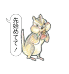 「とりあえZoo」(個別スタンプ:4)
