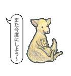 「とりあえZoo」(個別スタンプ:28)