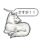 「とりあえZoo」(個別スタンプ:40)