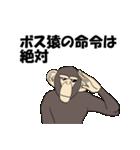 今、サルが熱い(個別スタンプ:11)