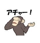 今、サルが熱い(個別スタンプ:23)