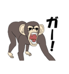 今、サルが熱い(個別スタンプ:27)