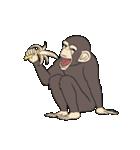 今、サルが熱い(個別スタンプ:28)