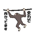 今、サルが熱い(個別スタンプ:30)