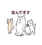あけましておめでとう【年賀テンプレ集】猫(個別スタンプ:26)