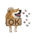 さすが!柴犬(よく使う言葉編)(個別スタンプ:03)