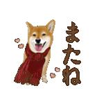 さすが!柴犬(よく使う言葉編)(個別スタンプ:09)