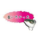 お久しぶり、再会編(香川県出身)鰤9(個別スタンプ:23)