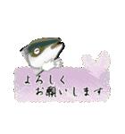 お久しぶり、再会編(香川県出身)鰤9(個別スタンプ:31)
