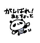 合格祈願!応援パンダ! Good Luck Panda(個別スタンプ:06)