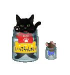 【びんねこ】黒猫バージョン(個別スタンプ:13)